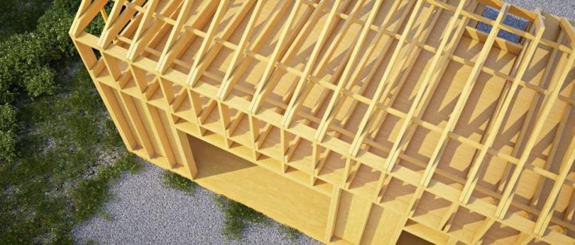 захист каркасу даху